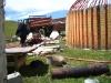 2009-06-21_11-29-05_-_IMG_7079